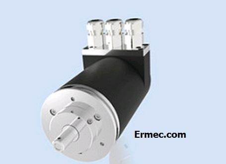 Ermec -TSM60P S 8192 4096 G 11/30 K5 10 PL=PRDP